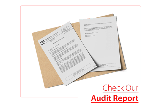 audit-report